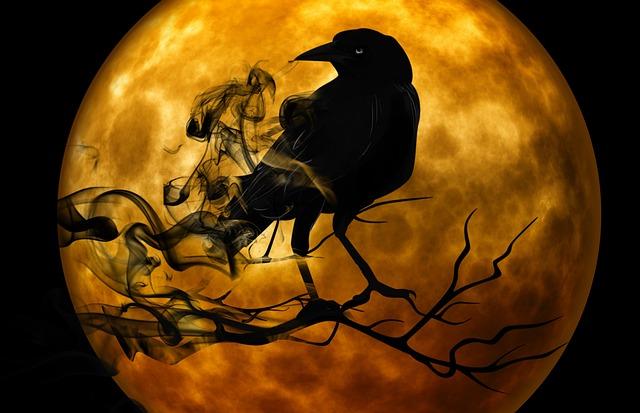 mystická noc