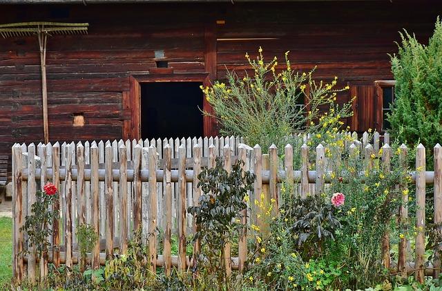 rostliny na balkoně